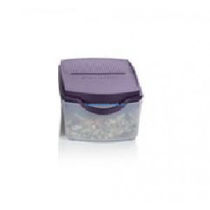 Компактус «Новинка» (350 мл) в фиолетовом цвете